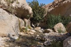14-Arugot-Wadi-Dead-Sea
