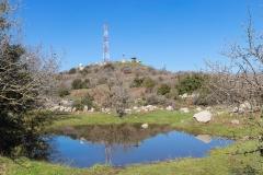 03-Bashanit-Park