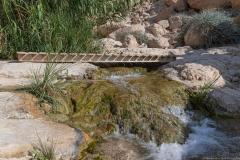 03-Eyn-Gedi-Dead-Sea