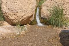 05-Eyn-Gedi-Dead-Sea
