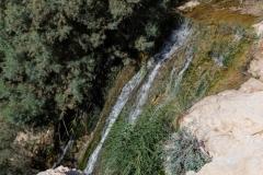 08-Eyn-Gedi-Dead-Sea