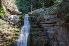 09-Eyn-Gedi-Dead-Sea