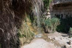 10-Eyn-Gedi-Dead-Sea
