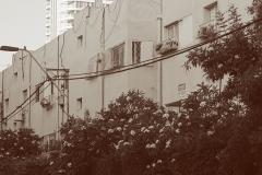 03-Tel-Aviv-Cityscape-Old-North