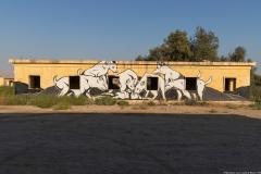 32-Gallery-Minus-430