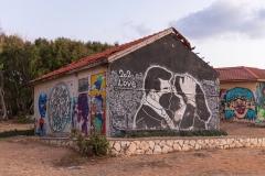 14-Graffiti-Shaidna-Ali