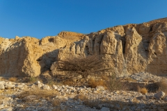 09-Nahal-Mishmar-Part-two