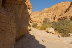 11-Nahal-Mishmar-Part-two