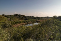 03-Nitzanim-National-Park