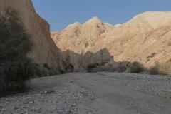 01-Og-Wadi