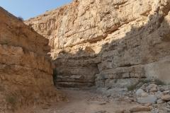 10-Og-Wadi