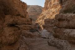 11-Og-Wadi