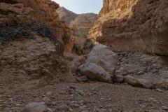 12-Og-Wadi