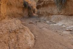 13-Og-Wadi