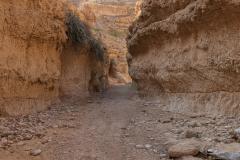 14-Og-Wadi