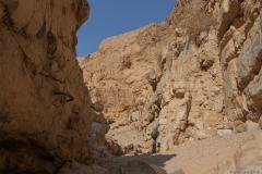 19-Og-Wadi