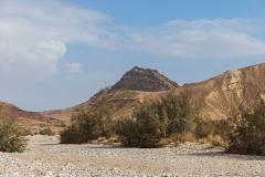 08-Saharonim-Makhtesh-Ramon