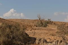 20-Saharonim-Makhtesh-Ramon