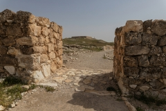 04-Tel-Arad