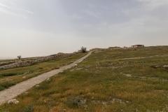 06-Tel-Arad