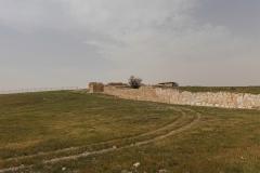 07-Tel-Arad