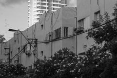 06-Tel-Aviv-Cityscape-Old-North