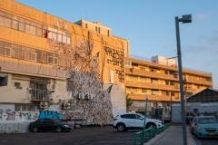 07-Tel-Aviv-CityScape-Patish-St-Graffiti