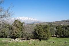 04-Tel-Qutza