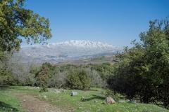 05-Tel-Qutza